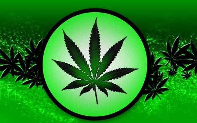 poparcie-wsparcie-legalizacja-marihuany