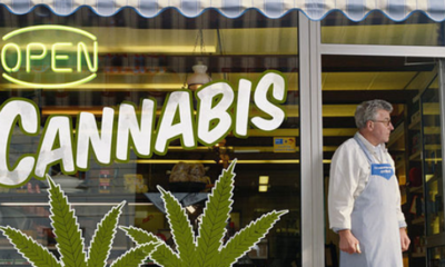 marihuana-bank-cannabis