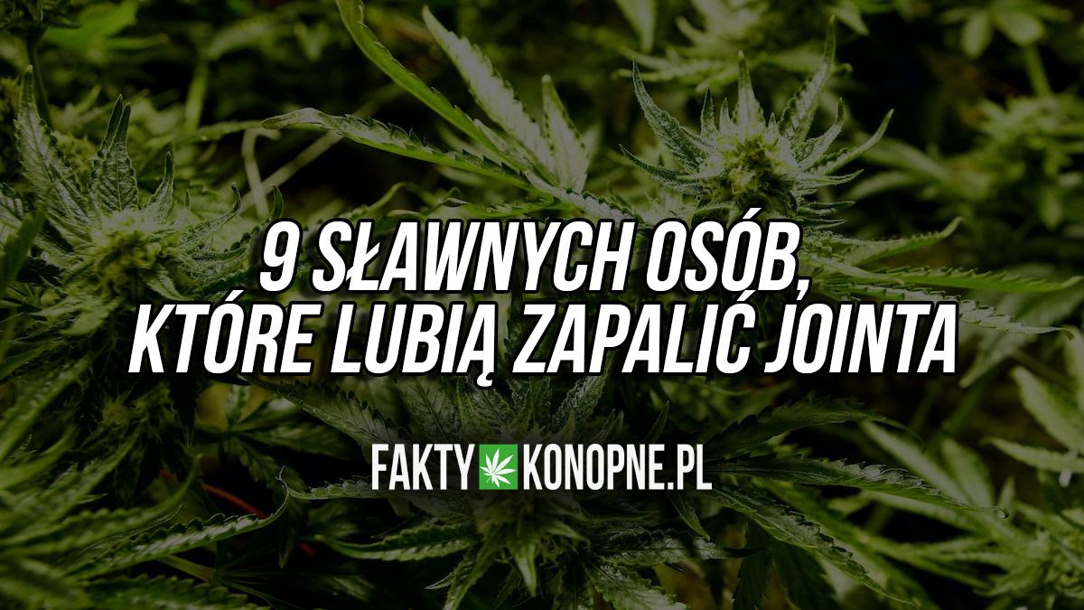 celebryci-slawni-pala-marihuane