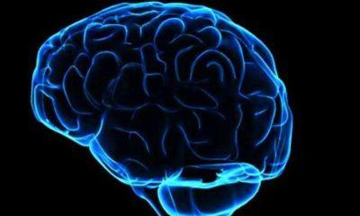Osoby z wyższym IQ są bardziej podatne na narkotyki