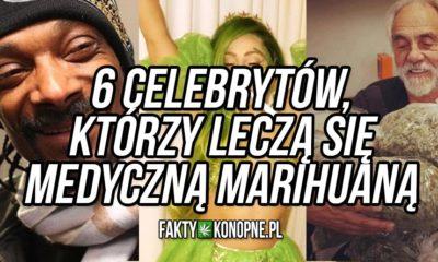 celebryci-gwiazdy-lecza-sie-medyczna-marihuana