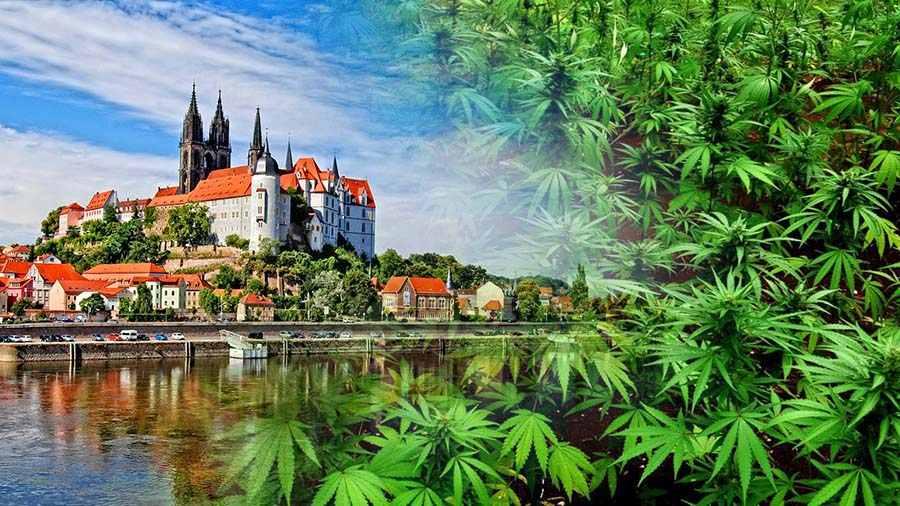 Dekryminalizacja marihuany w Czechach