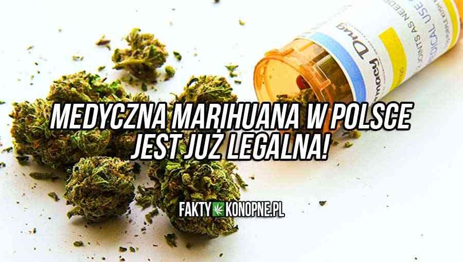 medyczna marihuana w polsce jest już legalna
