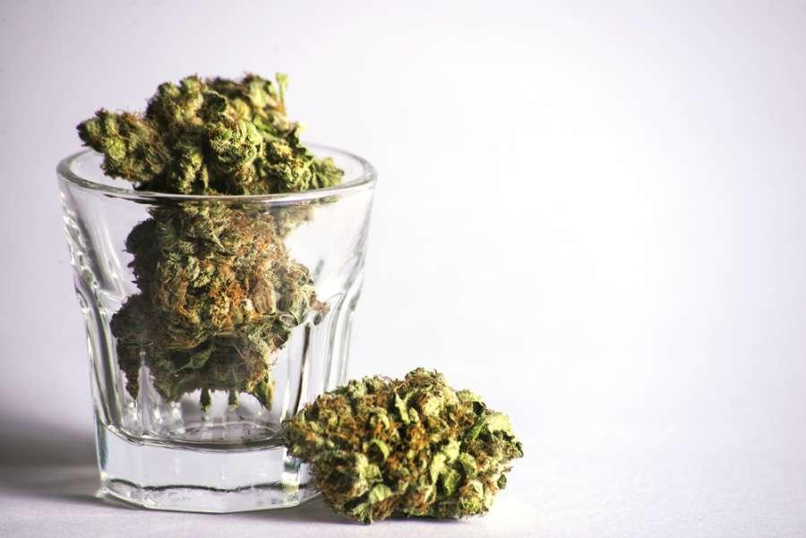 W porównaniu do alkoholu, używanie marihuany nie jest szkodliwe dla mózgu
