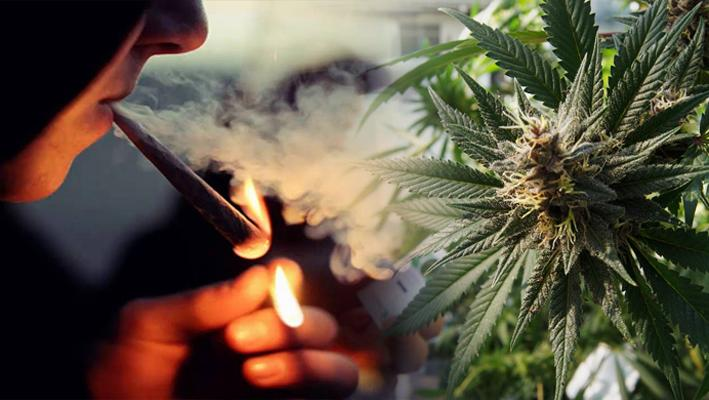 Objawy i efekty odstawienia marihuany