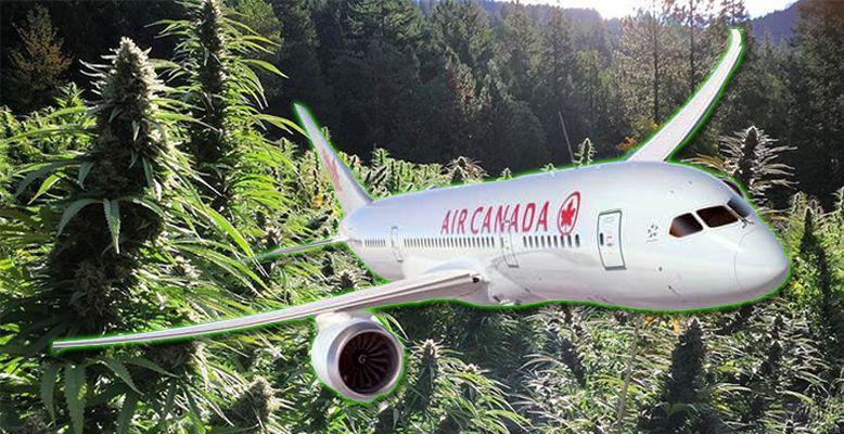 Kanadyjczycy mogą legalnie latać samolotem posiadając 30g marihuany
