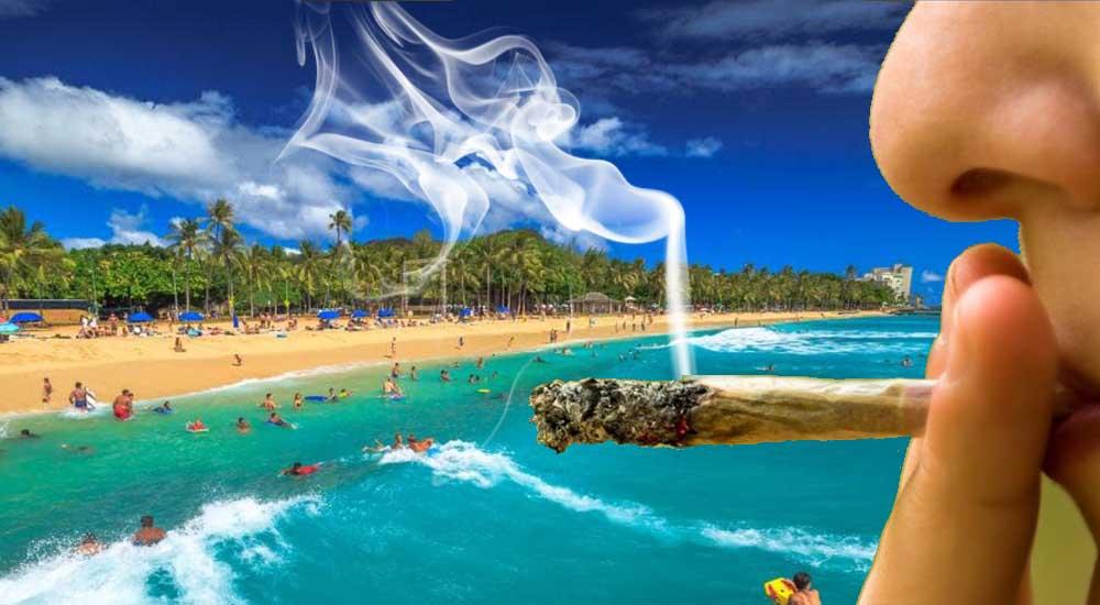 Legalizacja marihuany na Hawajach - senat zatwierdził projekt ustawy