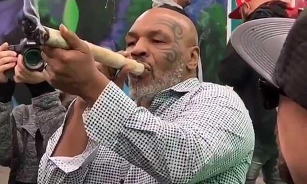 Mike Tyson z gigantycznym jointem na festiwalu marihuany