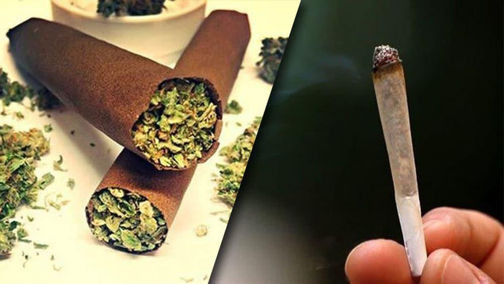 Palenie bluntów może powodować większe uzależnienie, niż palenie jointów