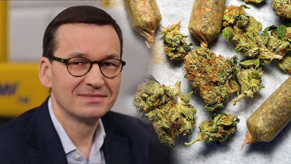 Mateusz Morawiecki o legalizacji marihuany