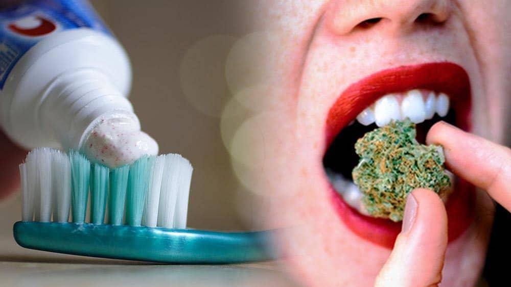 Konopie lepiej usuwają kolonie bakterii na płytce nazębnej, niż popularne pasty do zębów