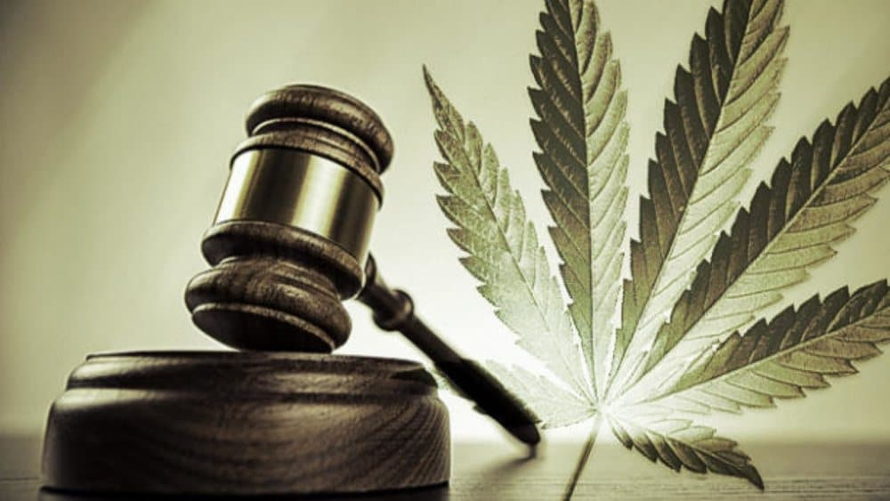 Los Angeles ułaskawi 66000 osób skazanych za marihuanę