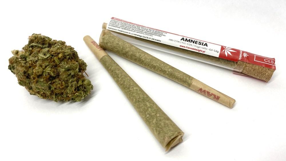 Pre Rollsy CBD - legalne jointy od CannabisLight.pl