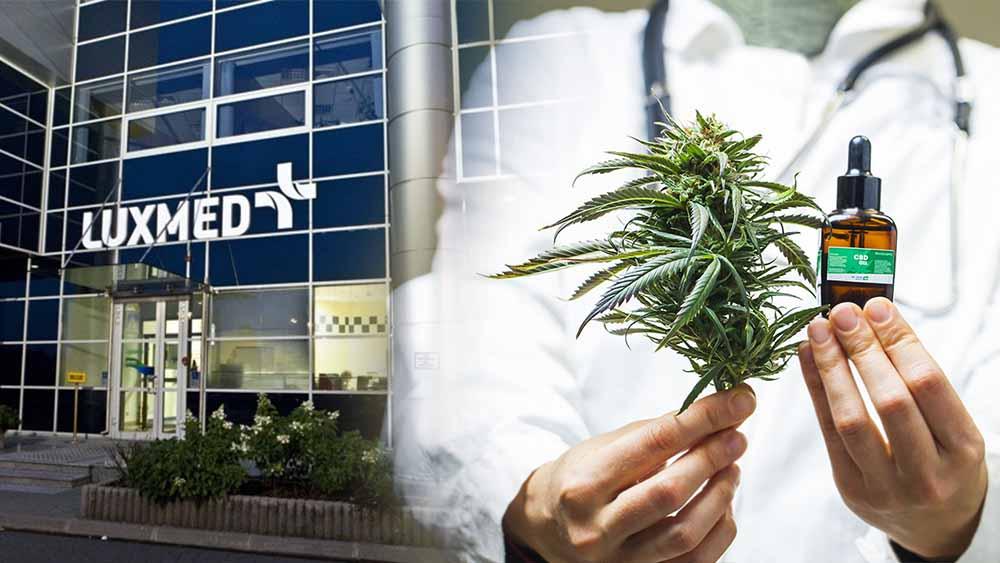 Lux Med otwiera placówkę leczenia marihuaną medyczną